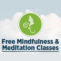 Koru Basic Mindfulness & Meditation Classes