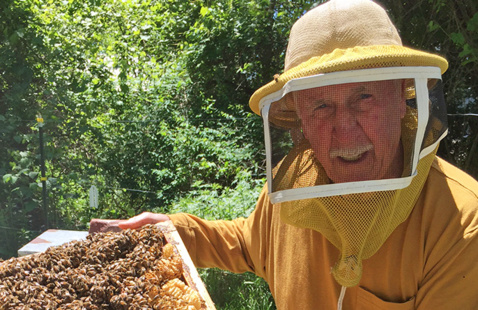 Jim Howard, in beekeeper suit, standing with a hive insert full of bees