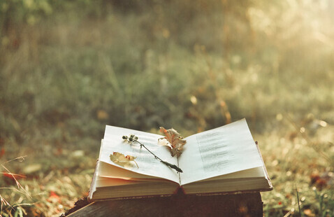 Book laying in the grass with flowers on the page.