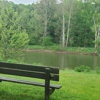 Wednesday Wellness Walk: Island Farm Trail