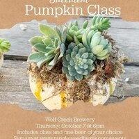 Succulent Pumpkin Class