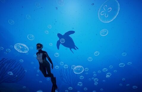 A screenshot from the game Beyond Blue that shows a diver swimming in front of the shadow of a turtle.
