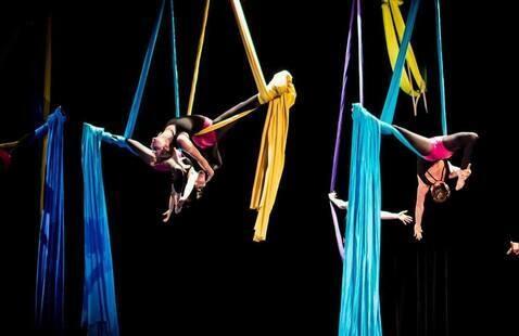 Reed Aerial Acrobatics Practice