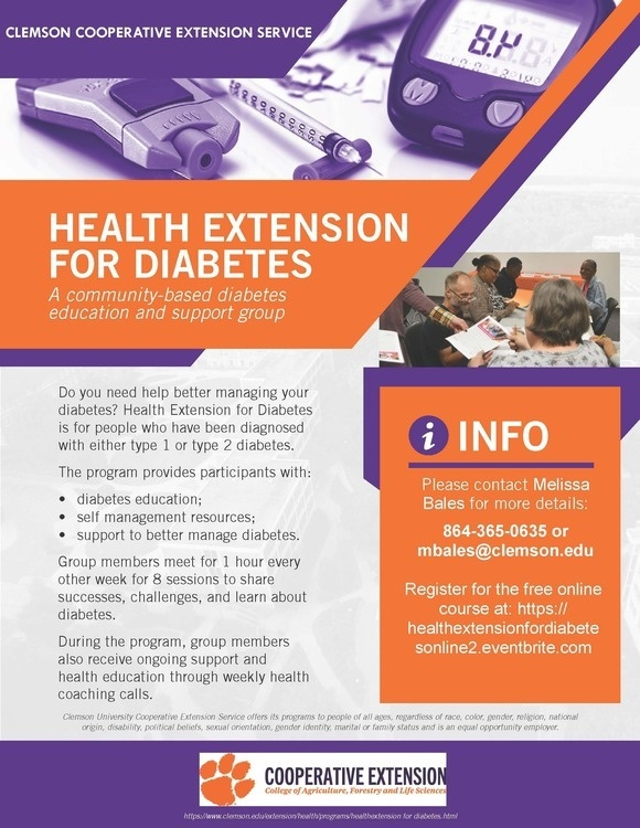 Health Extension for Diabetes