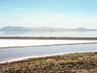 Victoria Sambunaris: Taxonomy of a Landscape