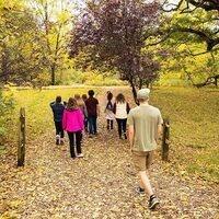nature walk in the arboretum