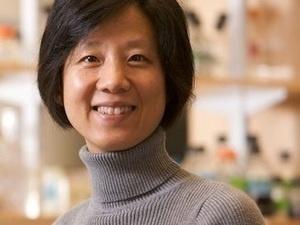 Yingxi Lin, PhD