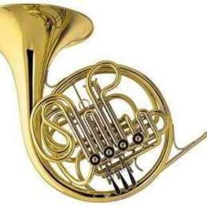 photo of horn