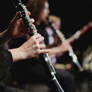 photo of clarinet