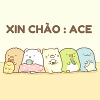 Xin Chao... ACE!