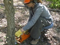 SC Women Owning Woodlands Chainsaw Safety and Handling Workshop