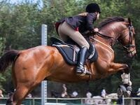 A rider on a horse jumping over a post