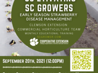 'CU'ltivate SC Grower Series - Early Season Strawberry Disease Management