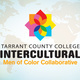 Tarrant County College Intercultural Network. Men of Color Collaborative
