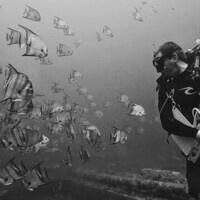 Second GBM - FSU Academic Diving Seminar