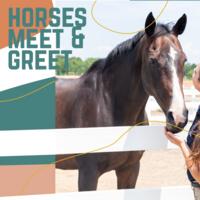 Horses Meet & Greet