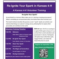 Re-Ignite Your Spark Flyer