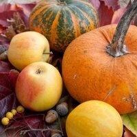 Sizerville's Annual Autumn Fest