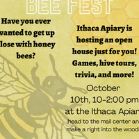 """Yellow graphic with low saturation honeycomb pattern in the upper right and bee in the bottom left. Text reads: """"BEE FEST/Have you ever wanted to get up close with honey bees?/Ithaca apiary is hosting an open house just for you! Games, hive tours, trivia and more!/October 10th, 10-2 at the Ithaca Apiary/Head to the mail center and make a right into the woods"""