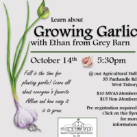 Learn About Growing Garlic