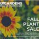 UT Gardens, Jackson, Fall Plant Sale