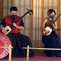 Takohachi X