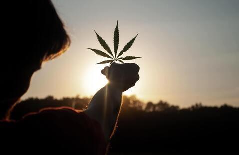 Cannabis Educational Workshop