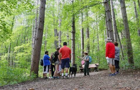 Trail 3 Pokagon State Park
