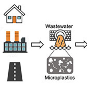 Physics & Astronomy and Environmental Studies Seminar: Microplastics in Water Reclamation