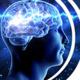 Live Virtual Ph.D. Neuroscience Open Houses [Apply By Dec. 1]