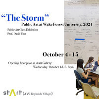 """""""The Storm"""": Public Art at Wake Forest University"""