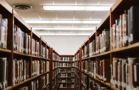 Long view down bookshelves