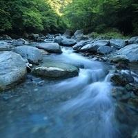 Hidden Rivers Movie Showing