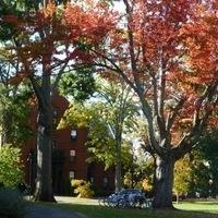 Academic Highlight: Trees of Mount Holyoke Tour