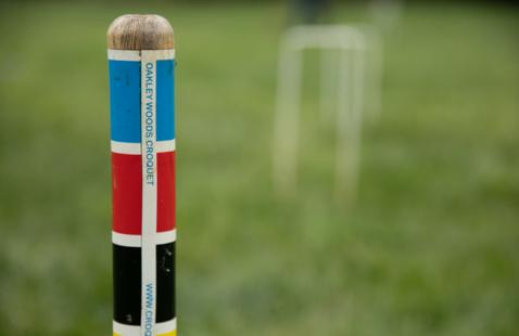 Croquet Practice