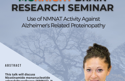 """""""Use of NMNAT activity against Alzheimer's related proteinopathy"""""""