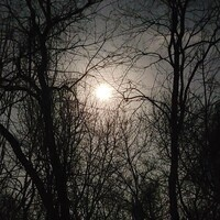 Park after Dark - A Full Moon Night Hike