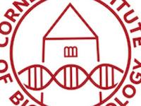 Bioinformatics Workshop: Docker and Singularity