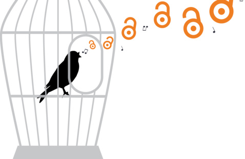 bird in cage with open access logo