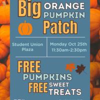 Big Orange Pumpkin Patch