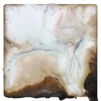 "Brittany Nelson, ""Gelatin Silver 8"", 2021, c-print, 40 x 40 inches"