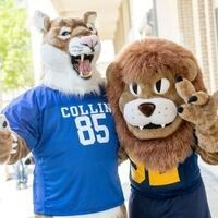 Transfer Admissions Fair at Collin College