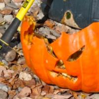All Hallows Eve Pumpkin Smashing