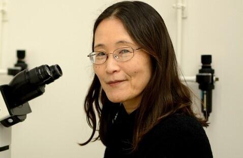 Chieko Mineo, Ph.D.