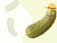 PickleHack Chip Handout