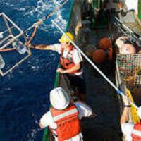 Marine Environmental Biology (MEB)