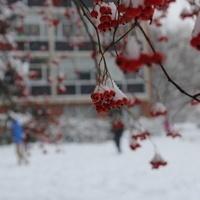 Enjoy Winter Break!