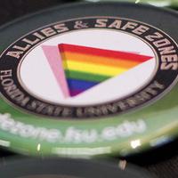 Allies & Safe Zones 101 Workshop