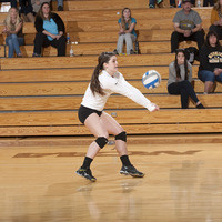 (Women's Volleyball) Ferris State vs. Michigan Tech