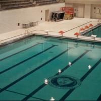 Community Open Swim